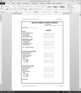 Situational Analysis Report Template