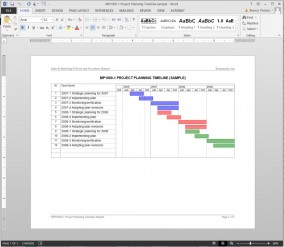 MP1000-1 Project Planning Timeline