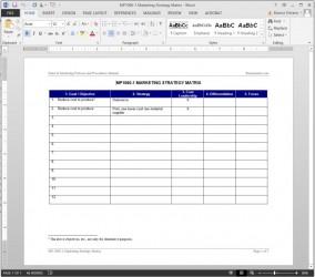 MP1060-1 Marketing Strategy Matrix
