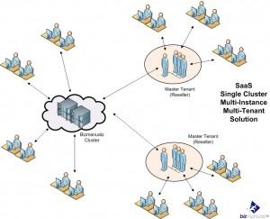 strategic information technology SaaS
