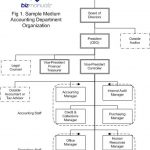 What Is an Accounting Department Organization Chart?