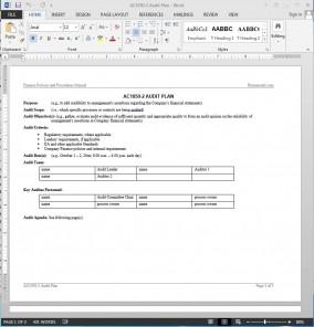 financial audit plan template ac1050 2. Black Bedroom Furniture Sets. Home Design Ideas