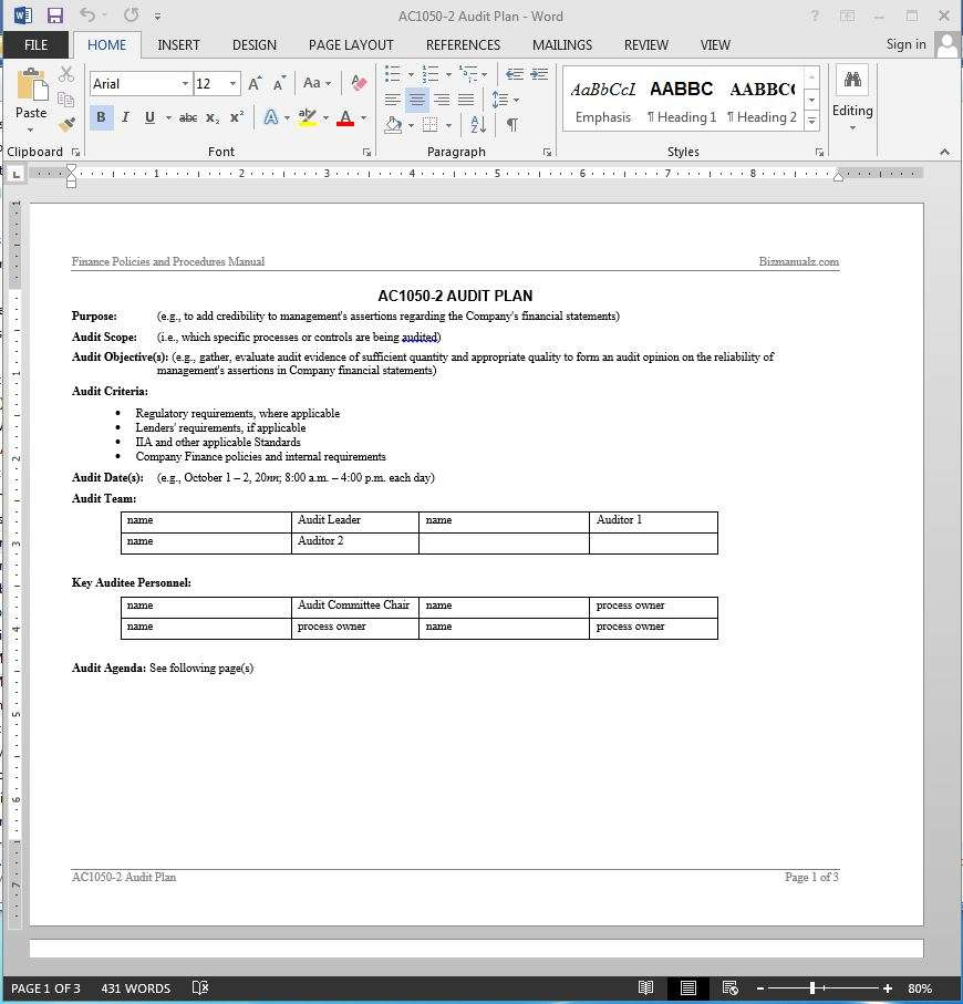 Financial Audit Plan Template AC - Audit program template