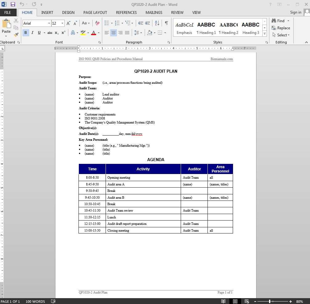 Audit Plan ISO Template - Audit program template