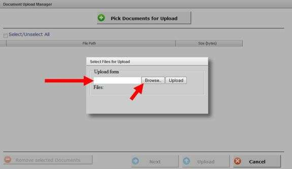 Select Files for Upload onpolicy